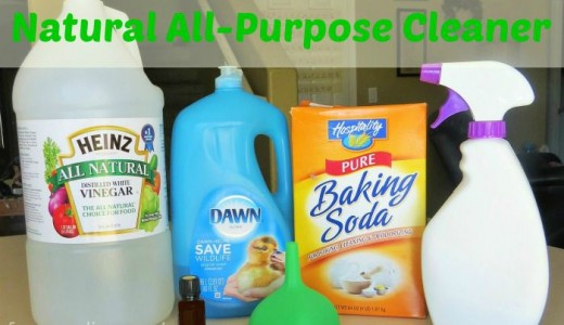 5 ingredient Natural All-Purpose Cleaner with lemon essential oil