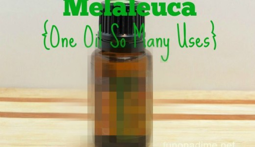 Melaleuca {One Oil So Many Uses}